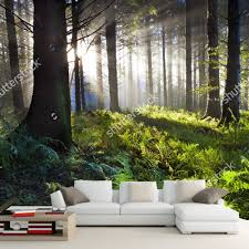 Wall Mural Sunrise In A Forest Wall Paper Self Adhesive Compare Prices On Sunrise Wallpapers Online Shopping Buy Low
