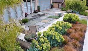 Backyard Lawn Ideas A Garden With A Huge Grass House Design