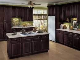 Kitchen Cabinets Gta Brown Kitchen Cabinets Modification For A Stunning Kitchen
