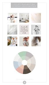 color palette inspiration by industry photography blog humble