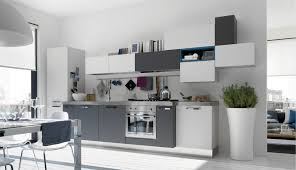 Kitchen Colors With White Cabinets Stunning Kitchen Cabinet Painting Ideas With Grey Colors 4777