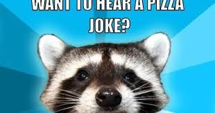 Meme Generator Raccoon - pun raccoon meme generator clearview windows