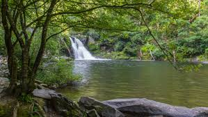 Tennessee nature activities images Incredible cades cove hiking trails you will love jpg