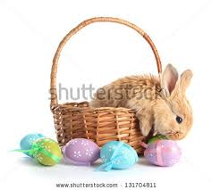 basket easter easter basket stock images royalty free images vectors