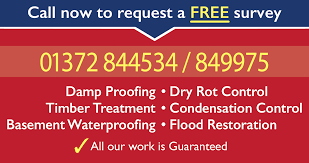 damp proofing timber decay wet u0026 dry rot treatment surrey