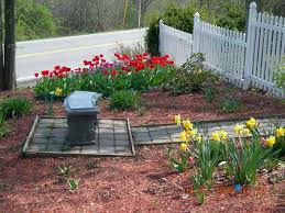 landscaping on the cheap chic design easy cheap landscaping ideas