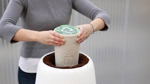 burial urns for human ashes bios incube is a smart and stylish way to grow a tree from the