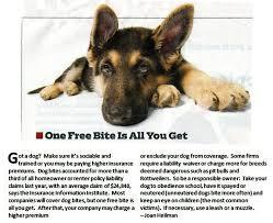 dog obedience training beth bradley