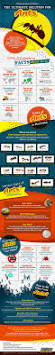 best 25 different types of ants ideas on pinterest character
