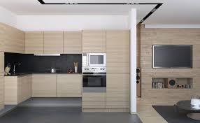 Vintage Galley Kitchen - small apartment kitchen design photos black granite countertop