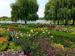 Botanical Gardens Highland Park 19 Best Chicago Highland Park Botanic Gardens Images On Pinterest