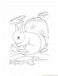 trend wild animal coloring pages 39 with additional coloring books