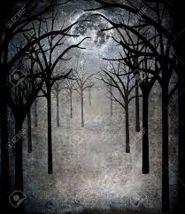 horror forest with moon stock photo picture and royalty free