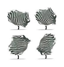 zebra royalty free vector image vectorstock