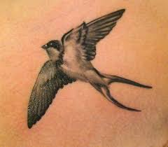 sparrow tattoo on shoulder meaning the love and loyalty of swallow tattoos tattoo articles ratta tattoo