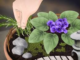 how to create your own mini garden 14 steps with pictures