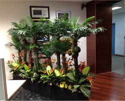office entrance partition with tropicall plants office