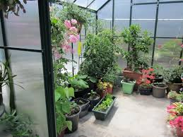 Hobby Greenhouses Hobby Greenhouses America News And Blog Page Keep Up Todate Here