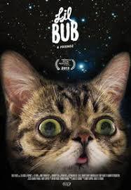Lil Bub Meme - lil bub know your meme