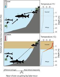 habitat si e social effects of differential habitat warming on complex communities pnas