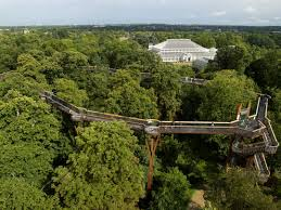 Royal Botanic Gardens Kew by Kew Gardens Skywalk Travel Uk England Pinterest Kew