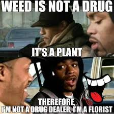 Funny Pot Memes - weed is not a drug jpg