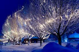 an overnight snowfall is lit by colourful lights one
