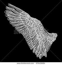 wings spread stock images royalty free images u0026 vectors