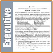 executive resume service cio sample resume cto sample resume it executive resume writer