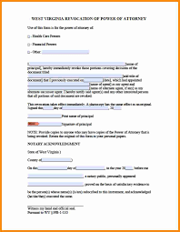 Financial Power Of Attorney by 7 Power Of Attorney Form Wv Action Plan Template