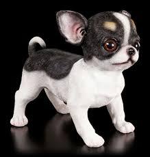 Kleink Hen G Stig Hundefiguren Deko Hund Günstig Online Kaufen Www Figuren Shop De