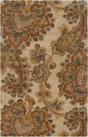 Brown Paisley Rug 58 Best Area Rug Images On Pinterest Area Rugs Accent Rugs And