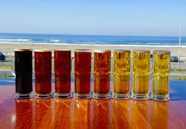 sf restaurants open on thanksgiving beach chalet san francisco u0027s best ocean view restaurant and brewery