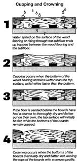problems with wood floors avoiding trouble with wood floors