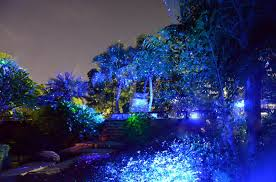 instant outdoor laser lights landscaping theplanmagazine
