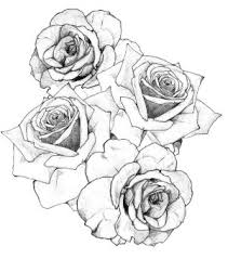 black and white rose tattoo drawing google search tattoo ideas