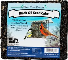 pine tree farms large seed and nut cakes