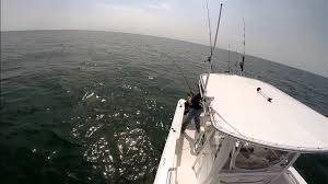cape cod bay fishing on sea hunt ultra 225 youtube