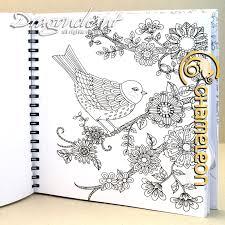 chameleon colouring book lori u0027s art garden poster colouring