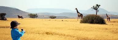 safari family safaris family safari holidays kuoni travel