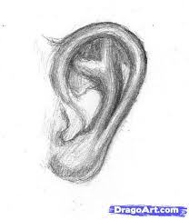 how to sketch an ear step by step drawing sheets added by