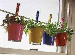 indoor window planters container gardening ideas for window planters