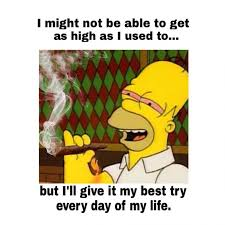 Meme Generator Homer Simpson - homer simpson funny weed memes get high everyday