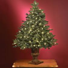 the world u0027s best tabletop prelit noble fir hammacher schlemmer