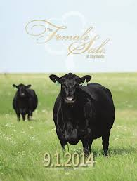 the female sale at eby ranch by tracy mcmurphy issuu