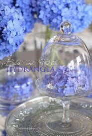best 25 periwinkle color ideas on pinterest periwinkle flowers