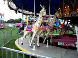 mixed animal merry go winnebago county fair