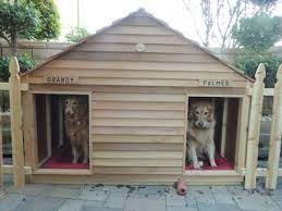 Backyard Ideas For Dogs Dog Friendly Backyard Ideas