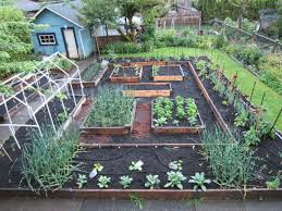 Veggie Garden Layout Ideas Almost There But Not Quite Gardens Layouts And Room