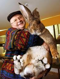 big easter bunny wow big bunny i want him the bunny not the lol